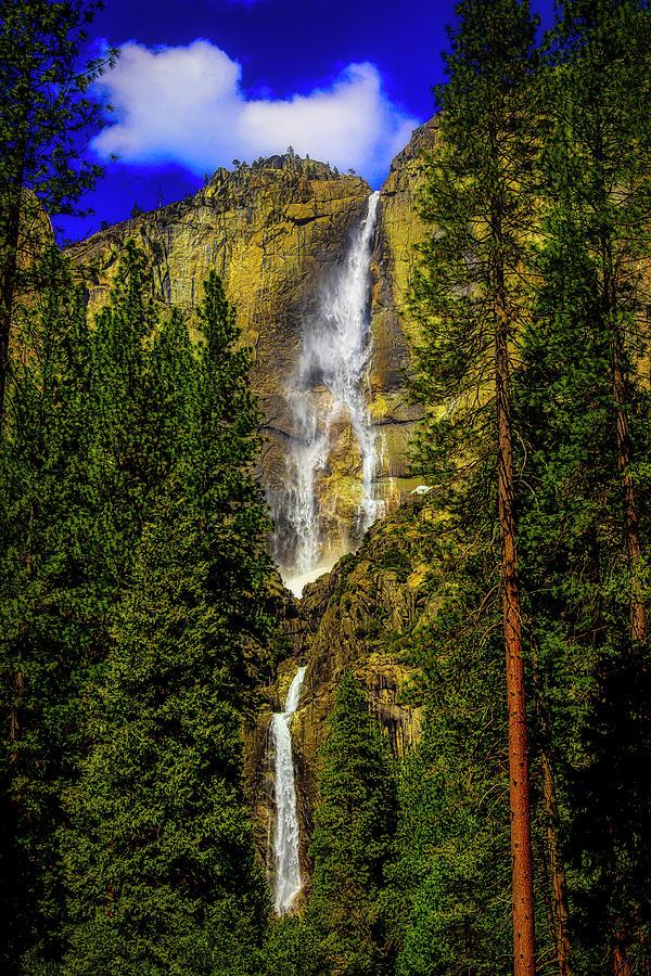 Spring Yosemite Falls by Garry Gay