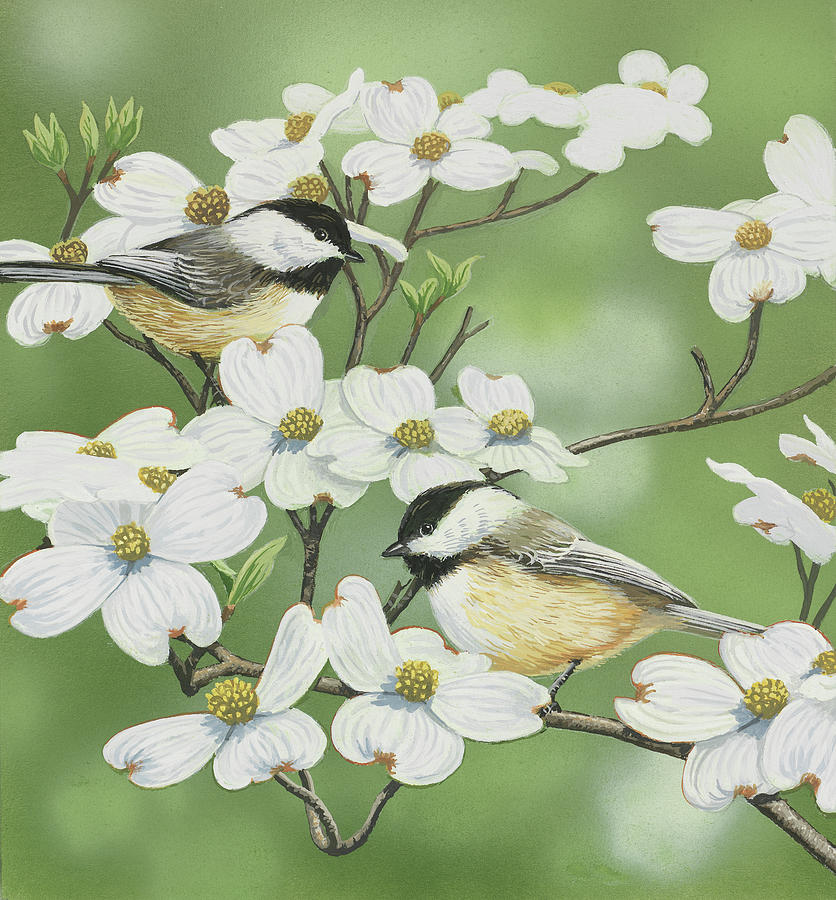 Birds Painting - Springtime And Chickadees by William Vanderdasson