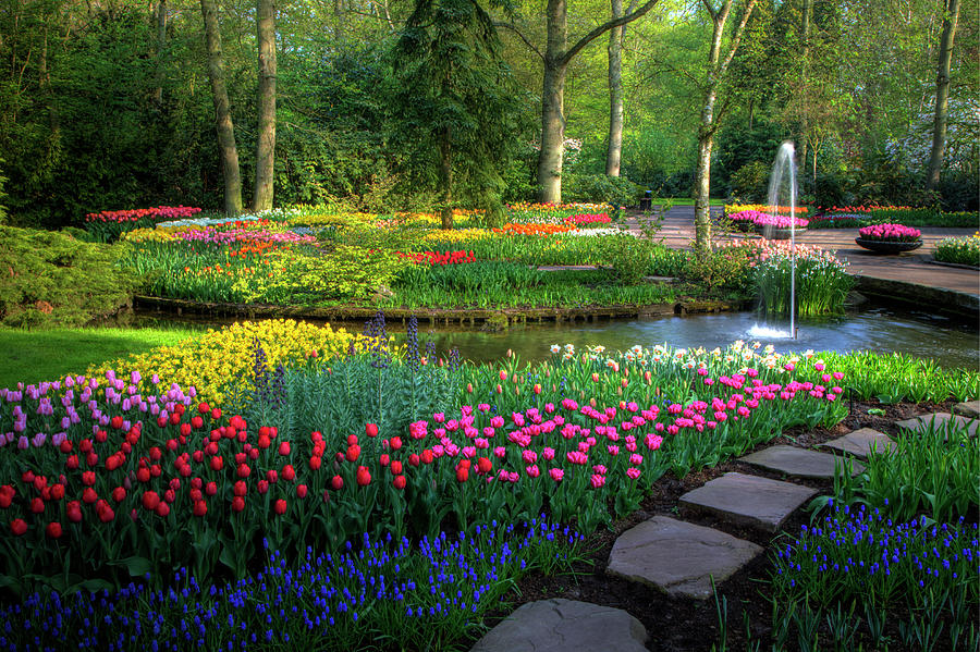 Springtime Keukenhof Gardens With Photograph by Darrell Gulin