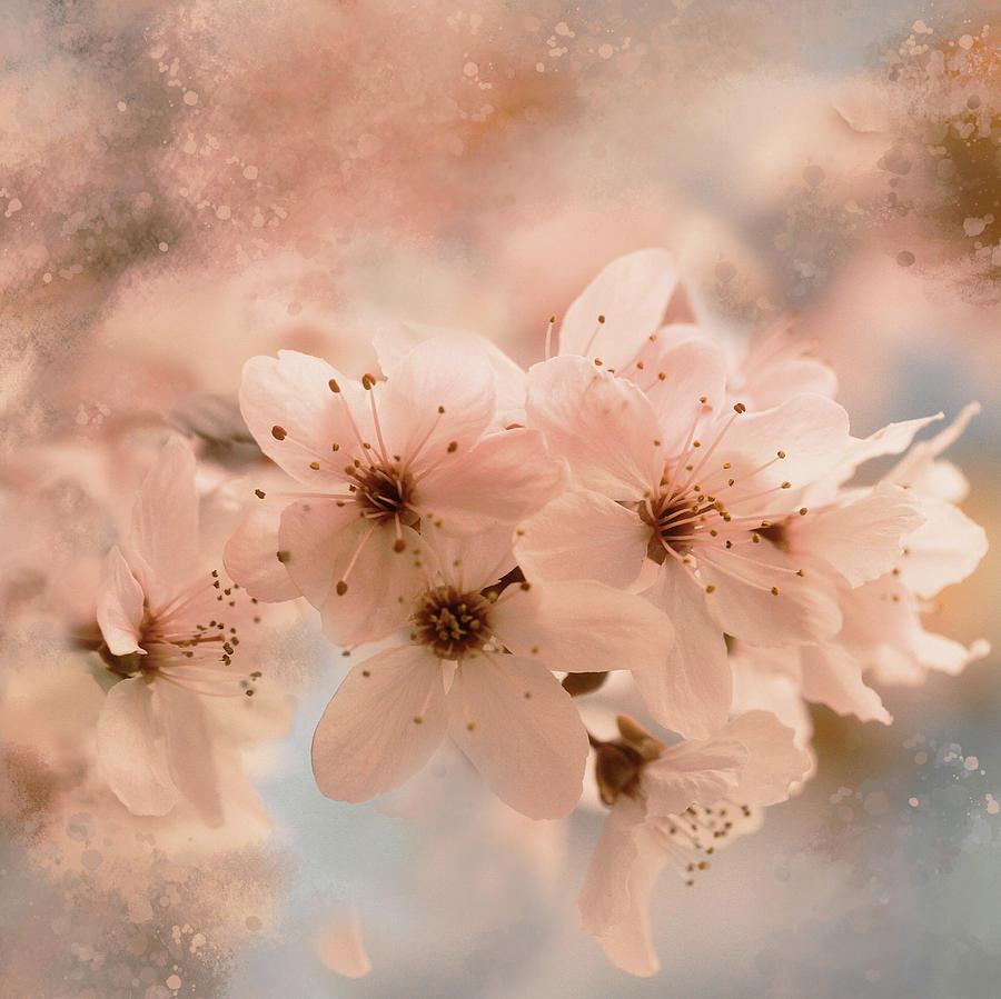 Sprinkles Of Springtime by Connie Handscomb