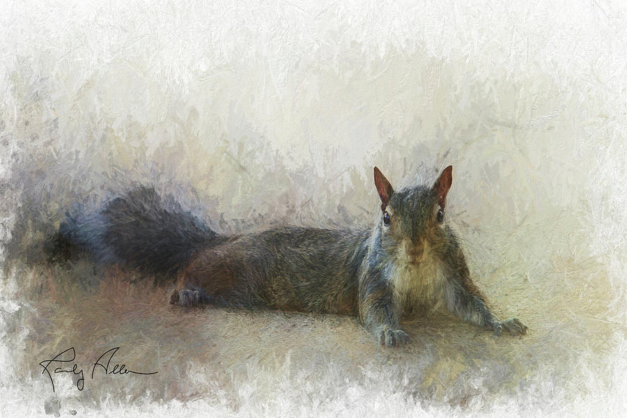 Squirrel Chilling by Randall Allen