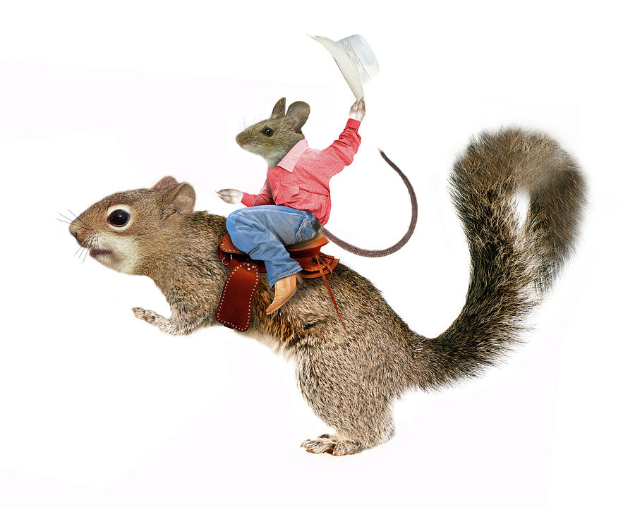 Squirrel Painting - Squirrel Rodeo by J Hovenstine Studios