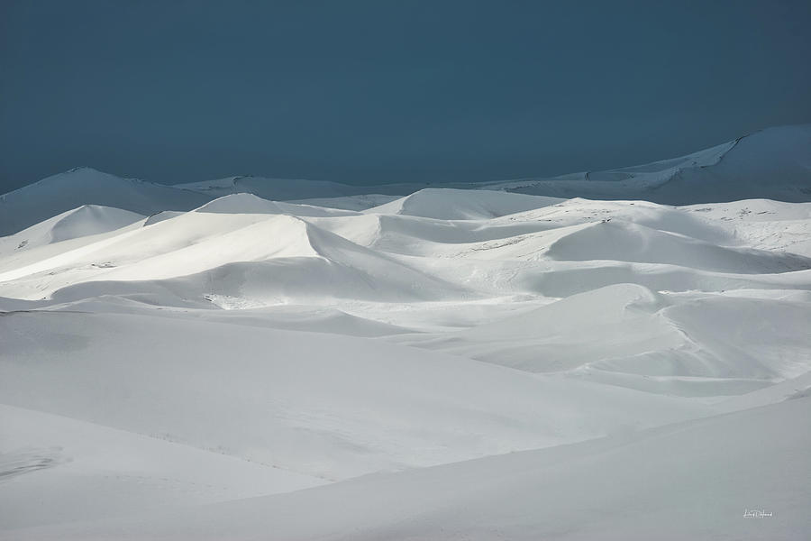 Nature Photograph - St. Anthony Dunes Winter by Leland D Howard