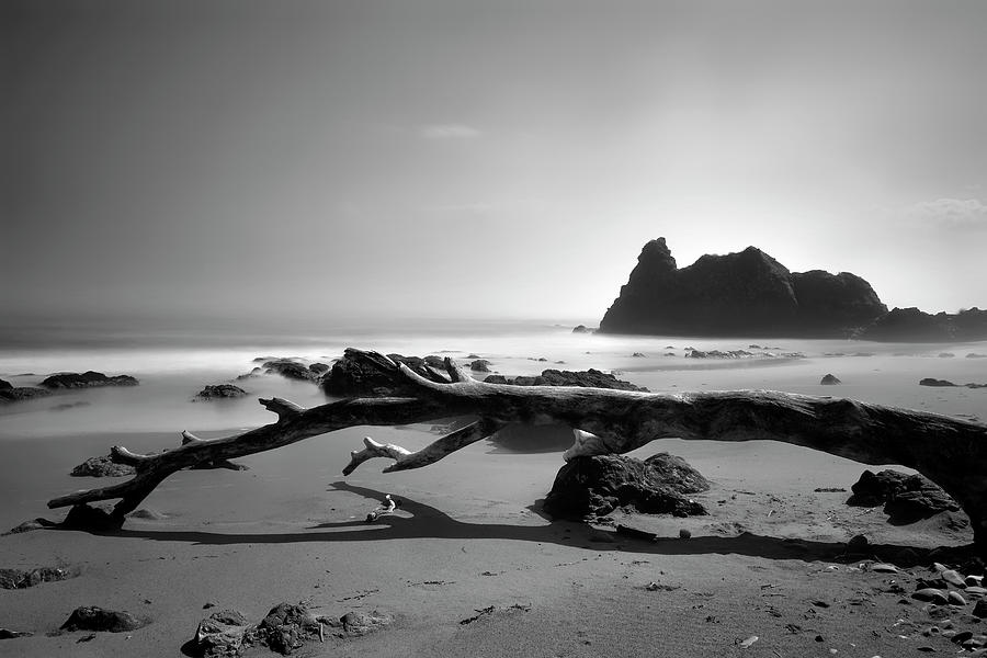 St Cyrus Beach - Scotland - Black and White by Jason Politte