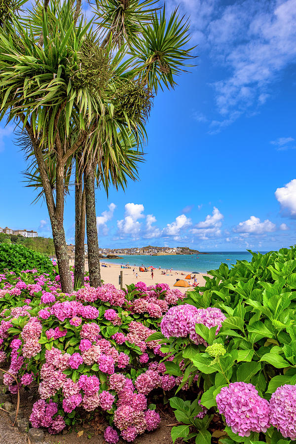 St Ives Cornwall - Summer time by Eddy Kinol