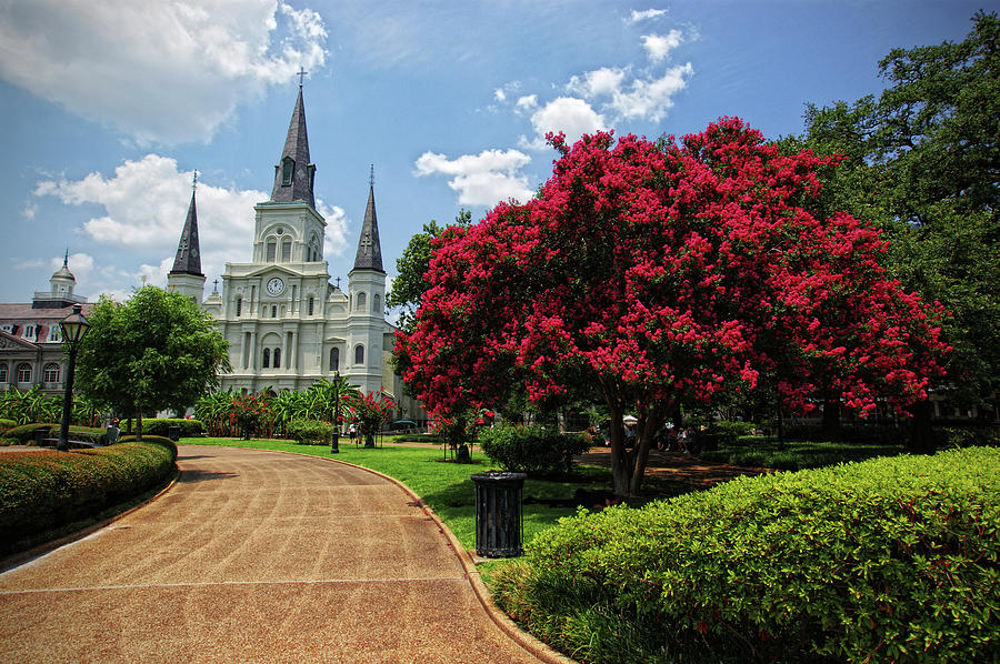 St. Louis Cathedral Photograph by Www.infinitahighway.com.br