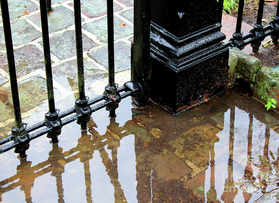 St Paul's Gate Puddle by Robert M Seel
