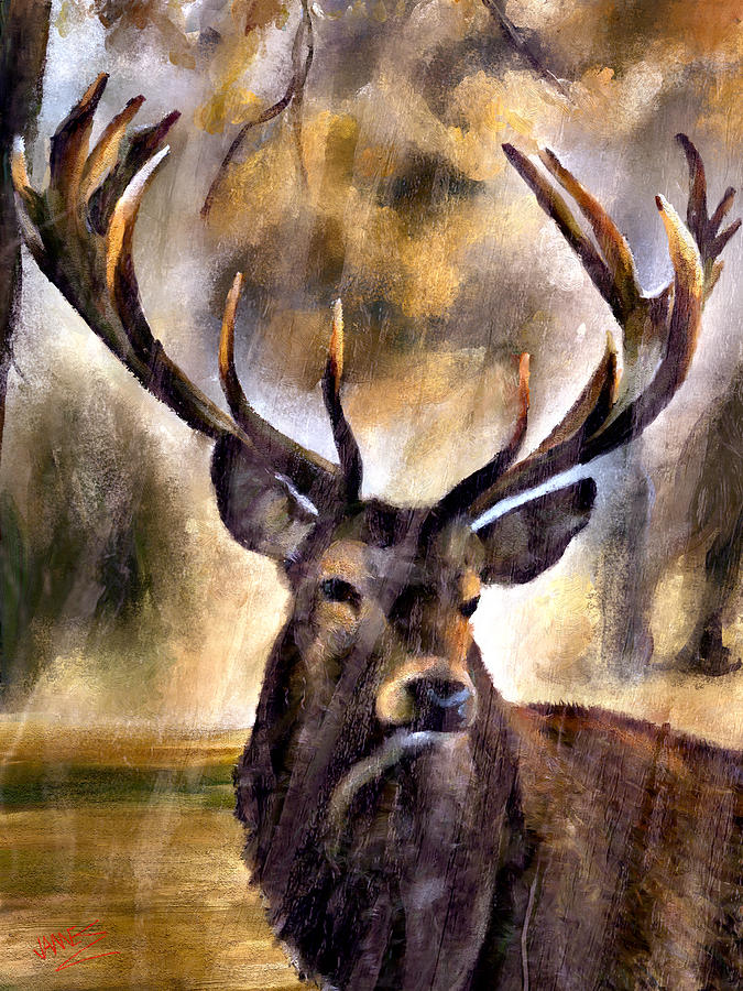 Stag by James Shepherd