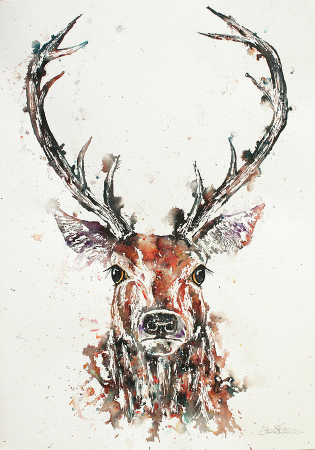 Stag Portrait by John Silver