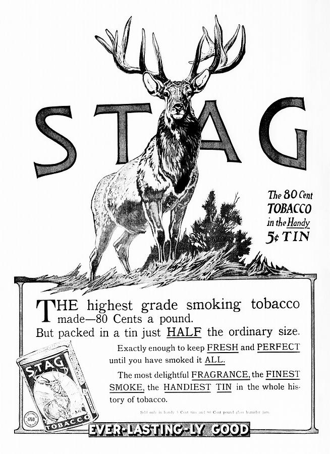 STAG SMOKING TOBACCO 1913 by Daniel Hagerman