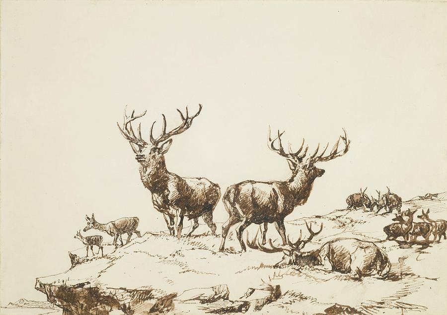 Sir Edwin Henry Landseer Painting - Stags And Hinds On A Mountain Side by MotionAge Designs