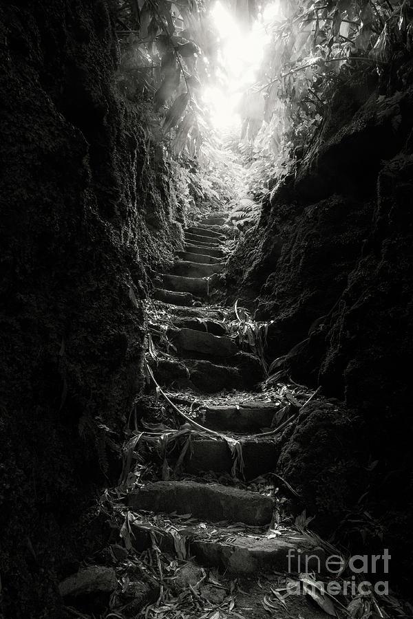 stairway to heaven by Fabian Roessler