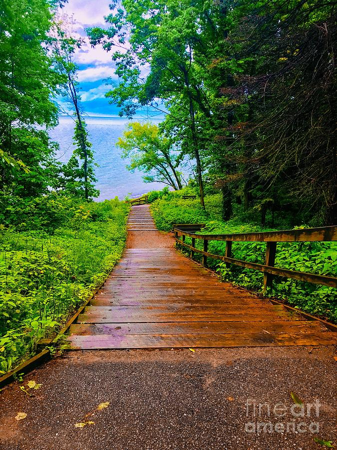 Stairway  To Lake Erie Photograph