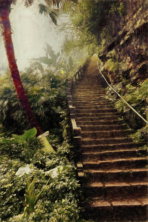 Stairs Photograph - Stairway To Yesterday by Rick Lawler