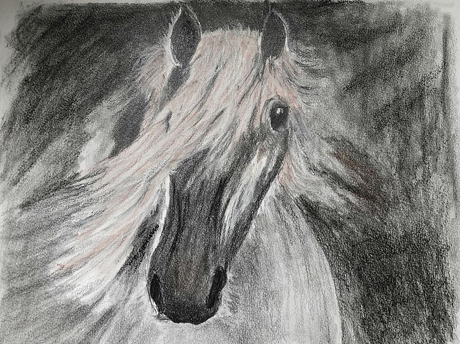 Stallion by Christine Lathrop