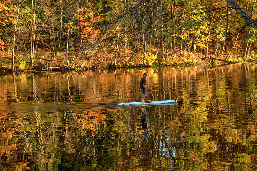 Stand Up Paddle Board - Autumn River by Joann Vitali