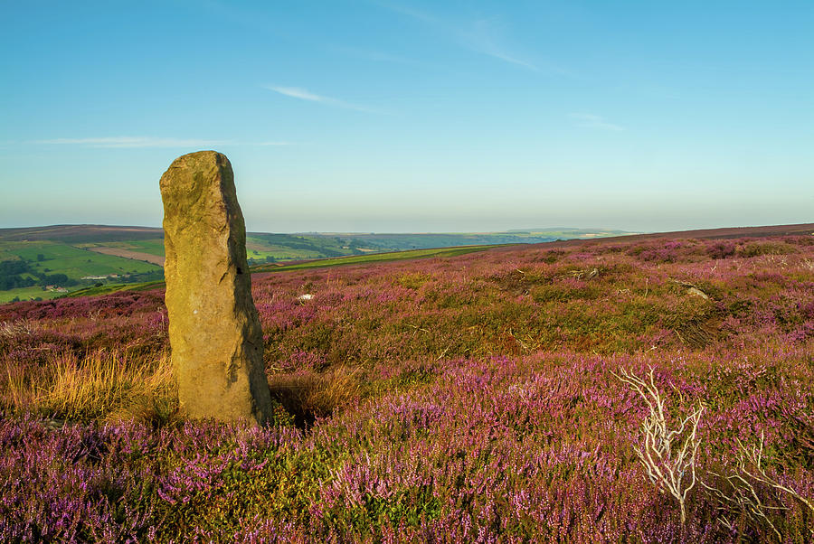 Danby Photograph - Standing Stone, Danby, Yorkshire by David Ross