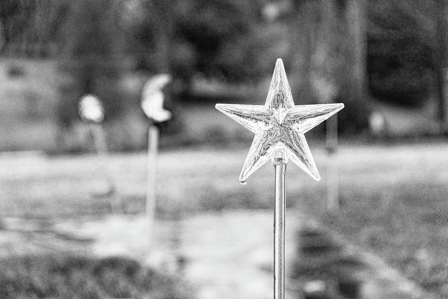Star and Moon Rain by Sharon Popek