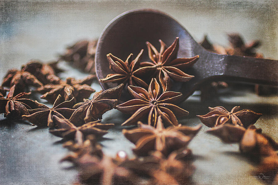 Brown Photograph - Star Anise 4825 By Tl Wilson Photography  by Teresa Wilson
