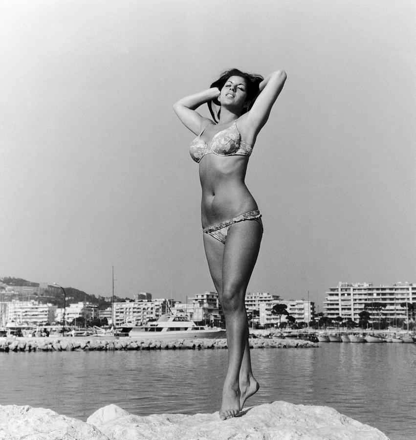 Starlet On The Beach Of Cannes On The Photograph by Keystone-france