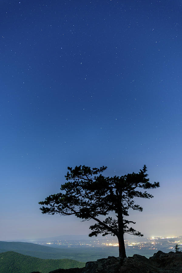 Starry Night At Raven's Roost by Doug Ash