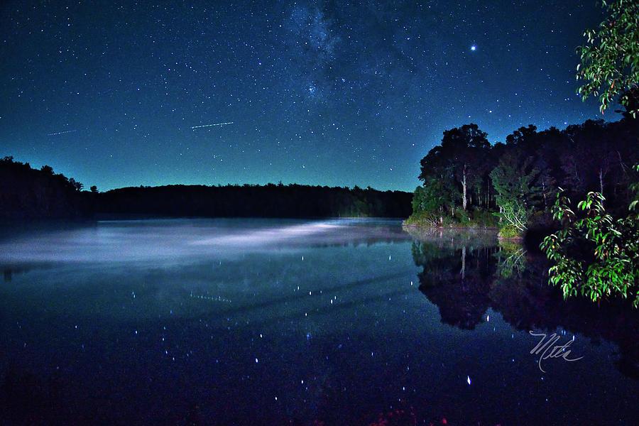 Starry Night by Meta Gatschenberger