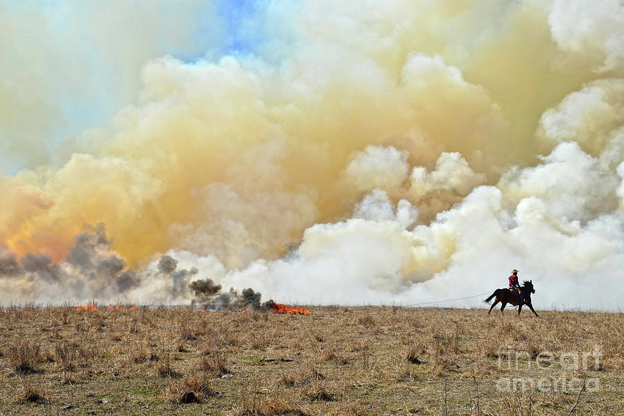 Starting A Controlled Burn Photograph
