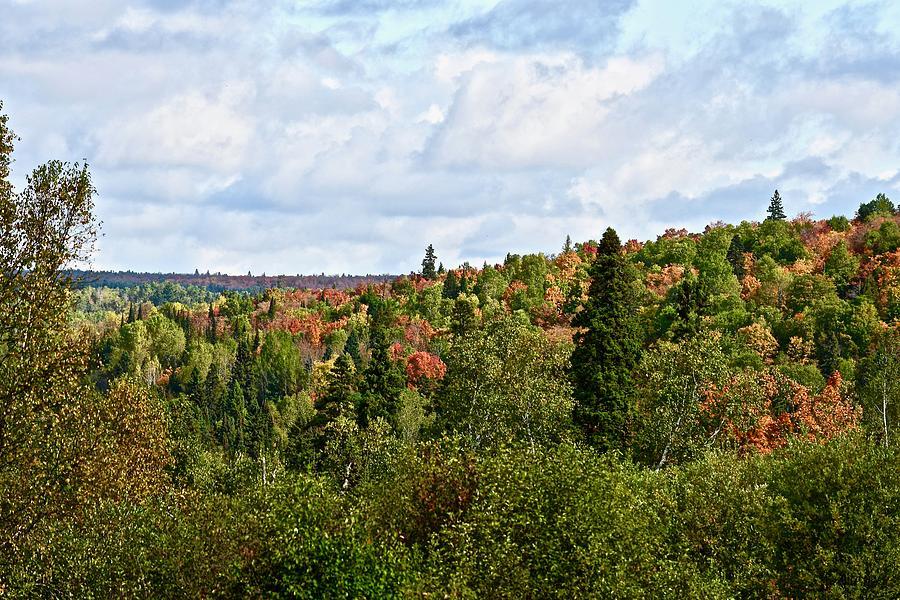 Starting to Look Like Fall by Hella Buchheim