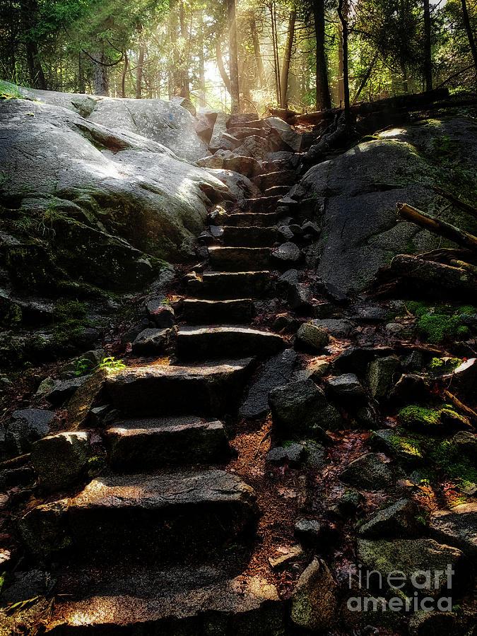 Stairway To Heaven by Susan Garver