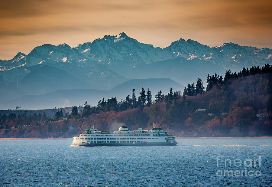 Seattle Photograph - State Ferry and the Olympics by Inge Johnsson