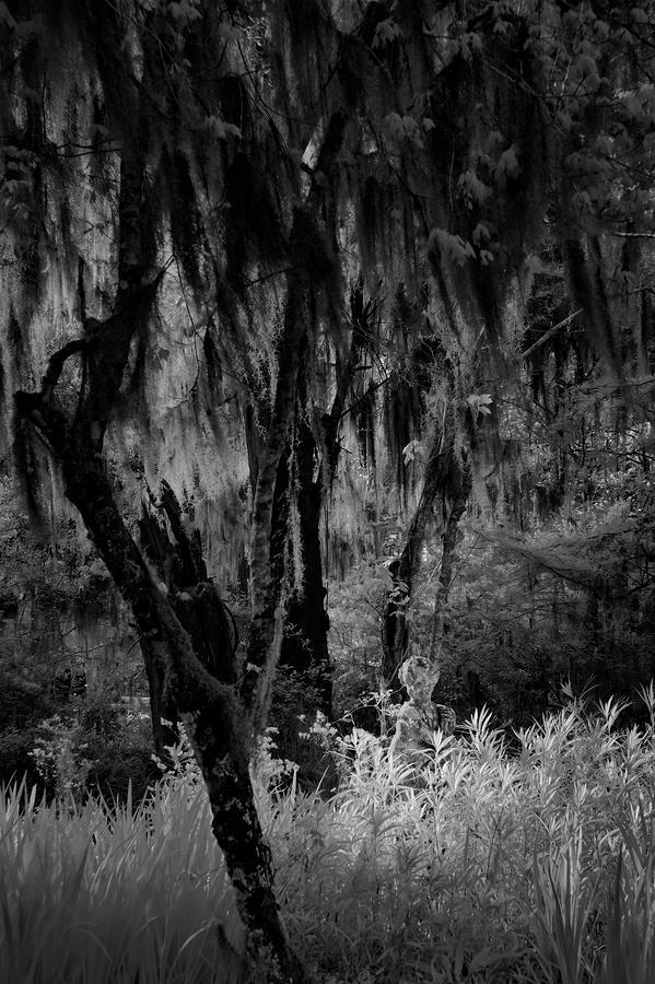 Black And White Photograph - Statue In The Grass by Jon Glaser