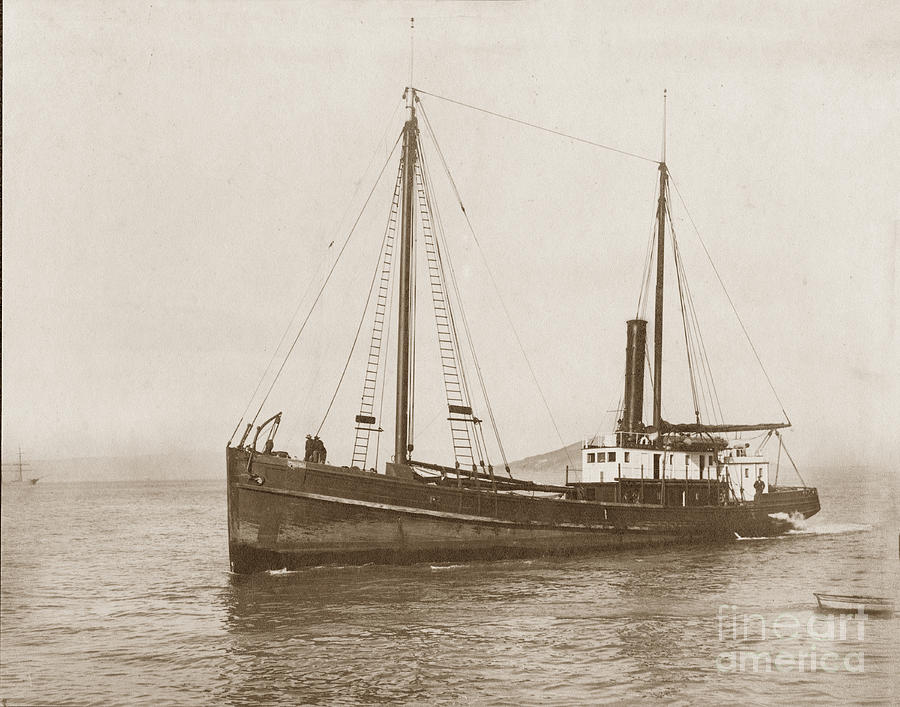Steam schooner Cleone circa 1915 by California Views Archives Mr Pat Hathaway Archives