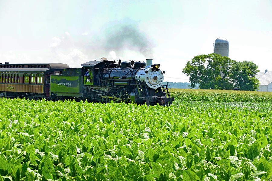 Prr Photograph - Steaming Through A Tobacco Field by Paul W Faust - Impressions of Light