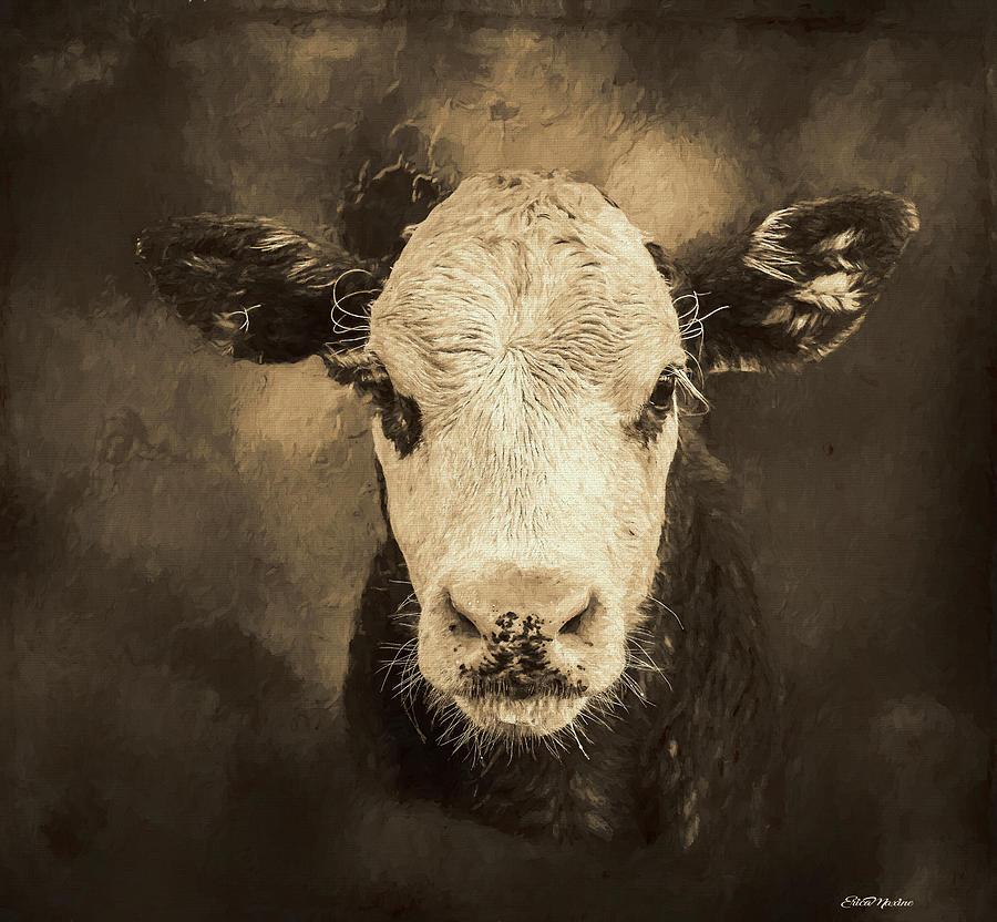 Steer Profile - Painting by Ericamaxine Price