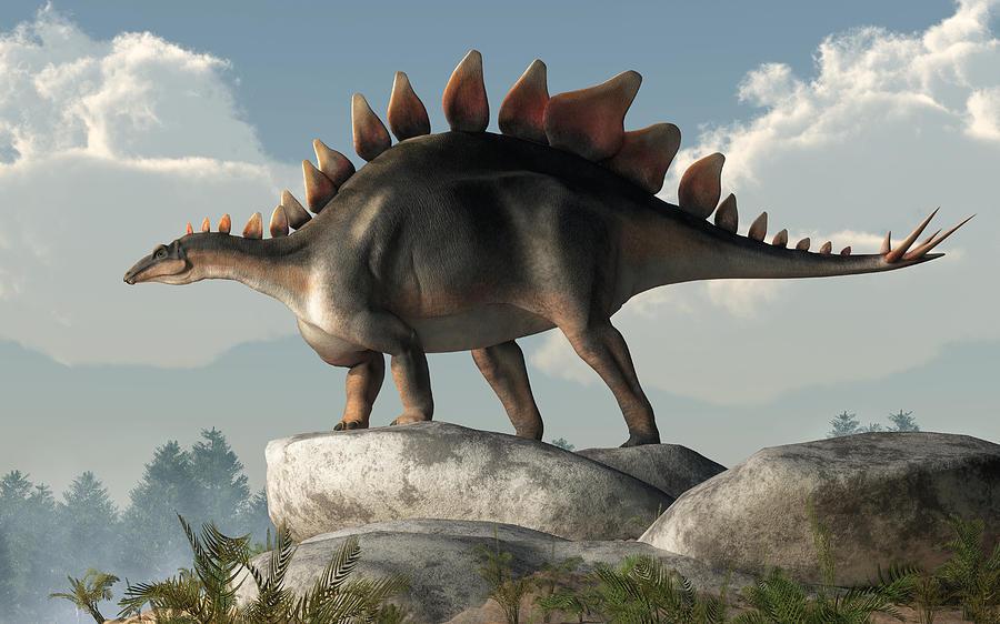 Stegosaurus Digital Art - Stegosaurus by Daniel Eskridge