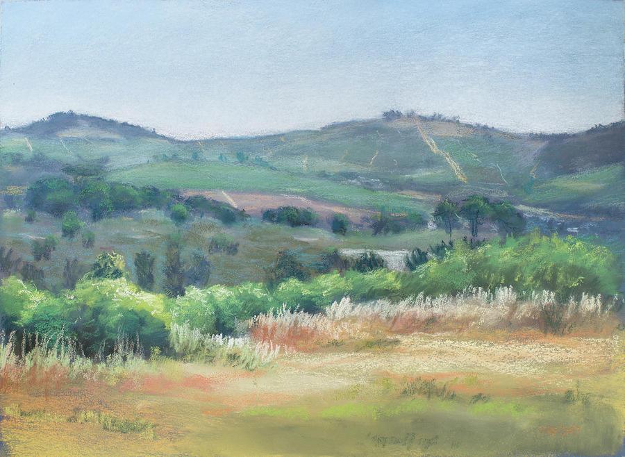 Stellenbosch Hills by Christopher Reid
