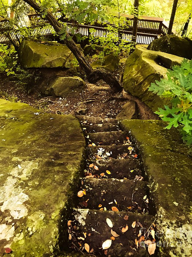 Steps Carved In Stone Photograph