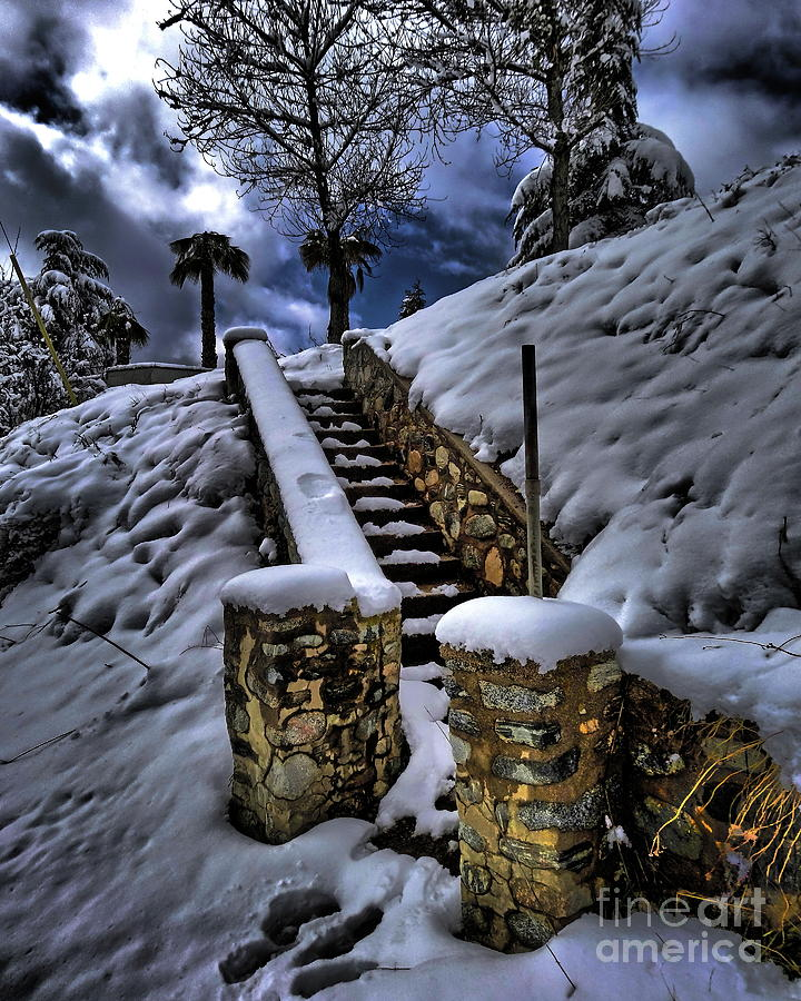 Steps in the Snow by Alex Morales