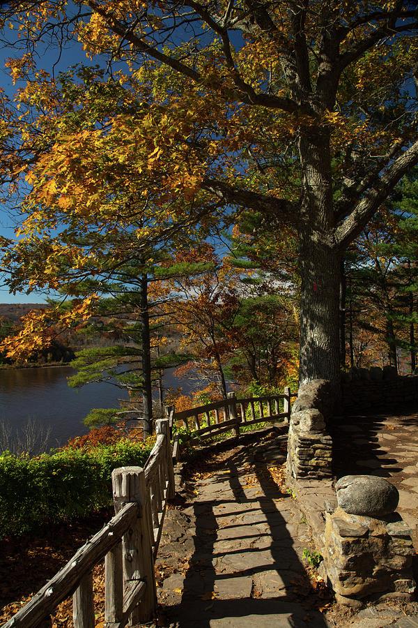 Steps To Autumn by Karol Livote