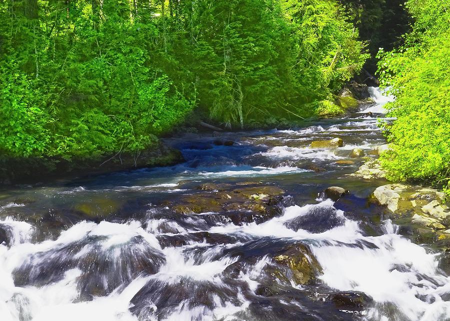 Stevens Creek by Bob Mullins