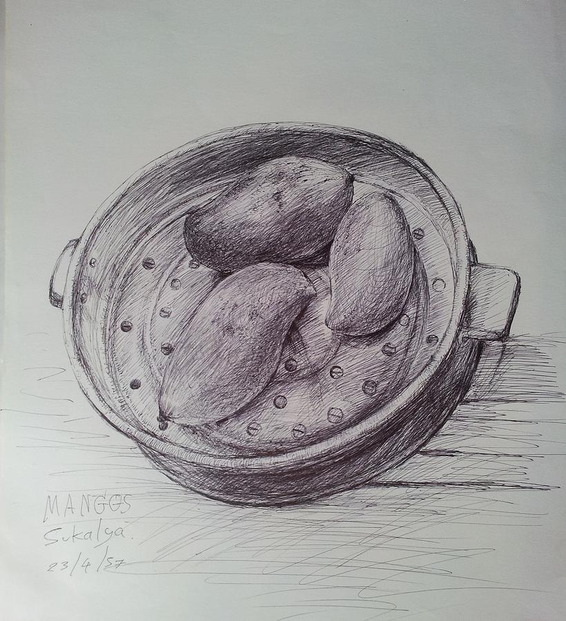 Still Life 1 Drawing