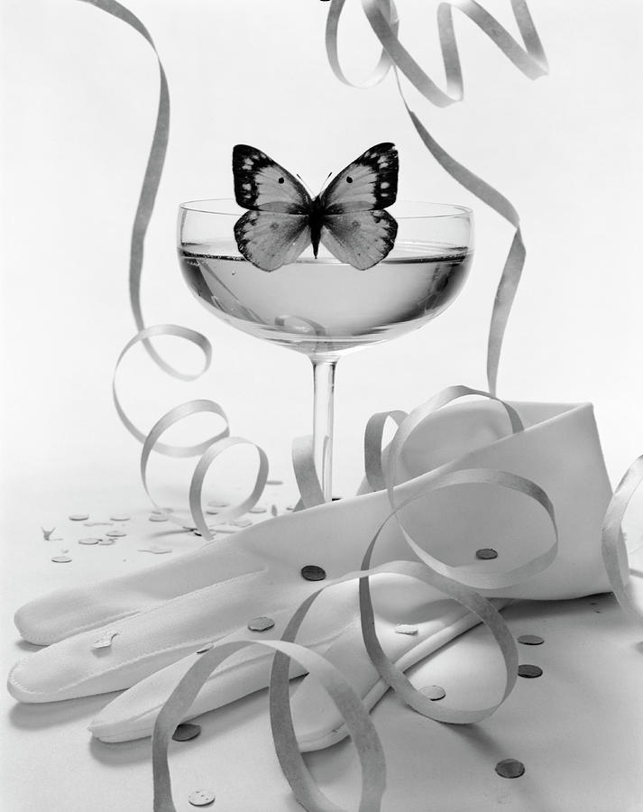 Still Life Photograph - Still Life Of Hansen Gloves And Butterfly by William Grigsby