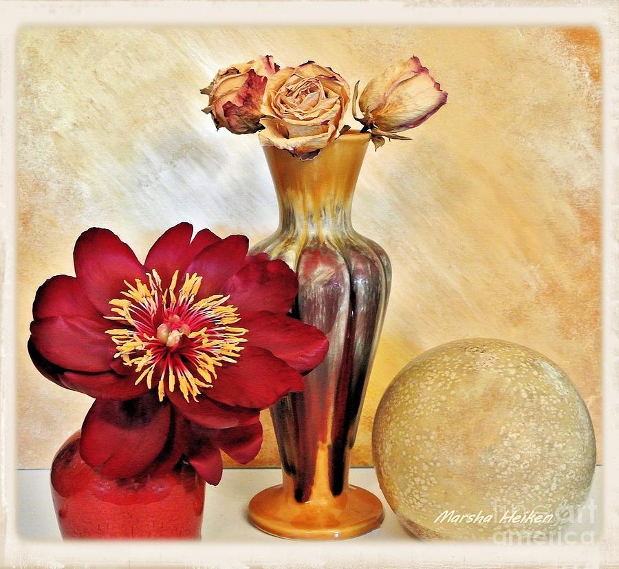 Photo Photograph - Still Life Peony And Dried Roses by Marsha Heiken