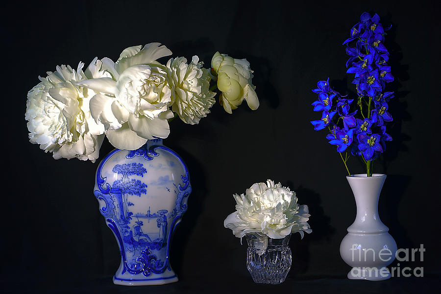 Still Life With Peonies In The Chinese Vase. Photograph