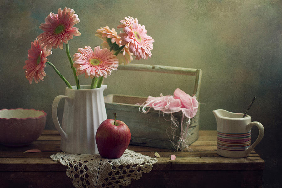 Still Life With Pink Gerberas And Red Photograph by Copyright Anna Nemoy(xaomena)