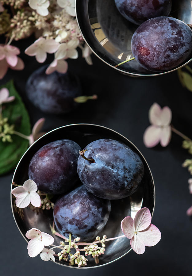 Still Life with Plums from Above by Maggie Terlecki