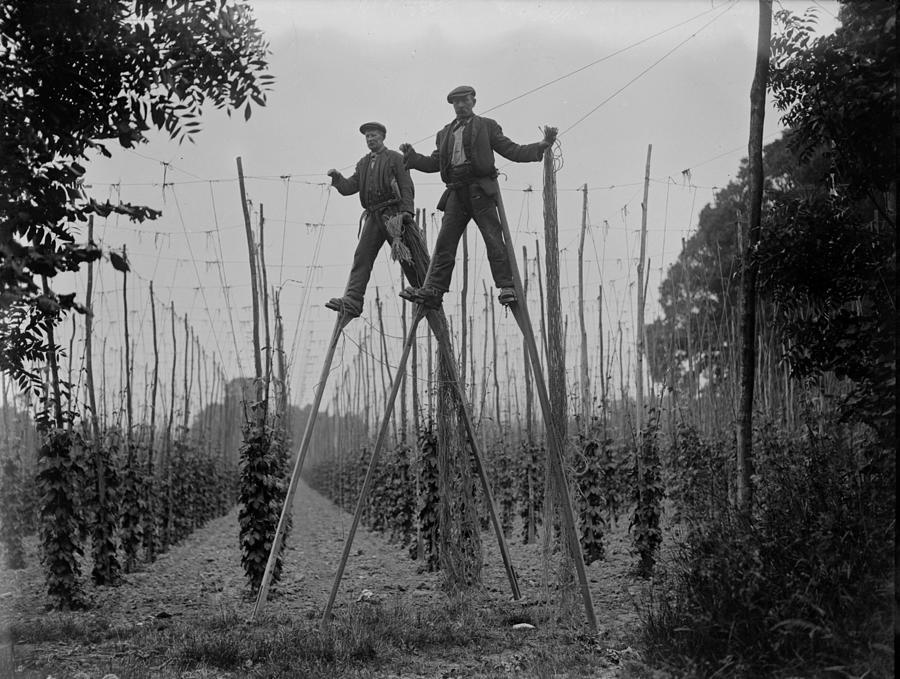 Stilt Workers Photograph by Fox Photos