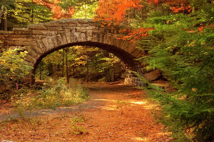 Stone Bridge, Part Of Carriage Roads Photograph by Danita Delimont