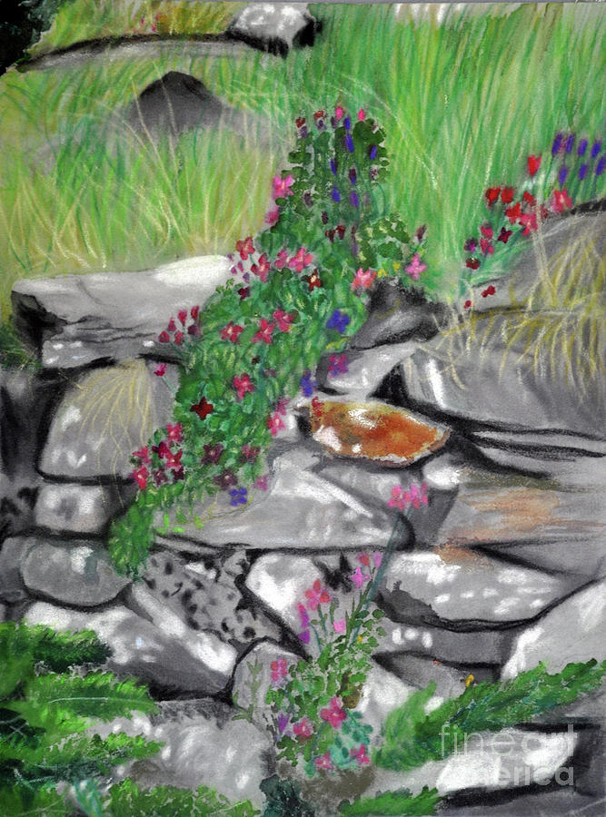 Stone Garden by Lori Moon