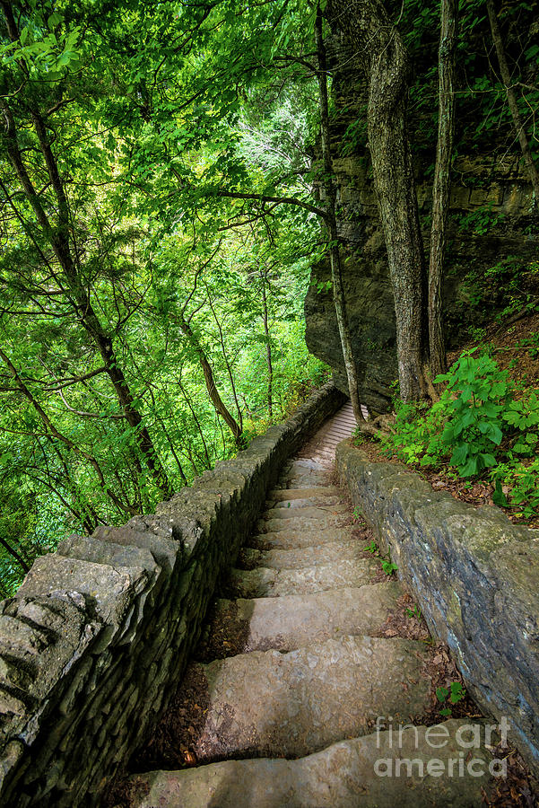 Stone Stairway - Clifty Falls Overlook - Indiana by Gary Whitton